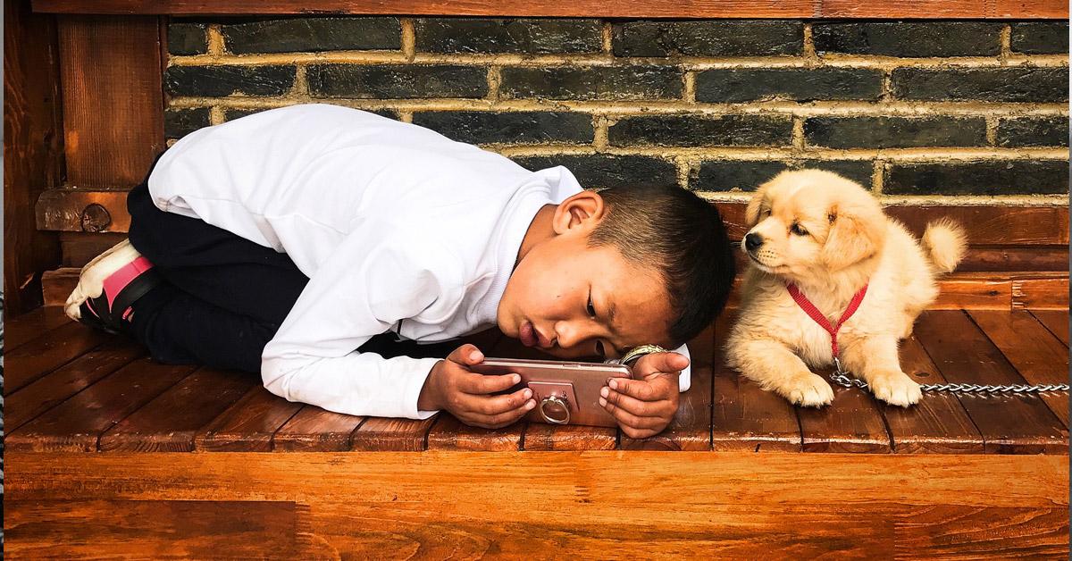 Le labrador : Meilleur chien pour enfant