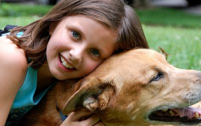 Meilleur chien pour enfant : Tous nos conseils !