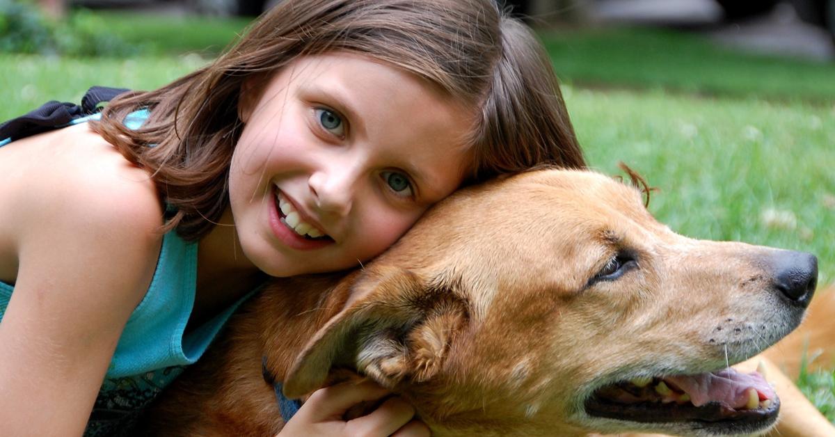 Meilleur chien pour enfants : Tous nos conseils pour choisir sans danger !