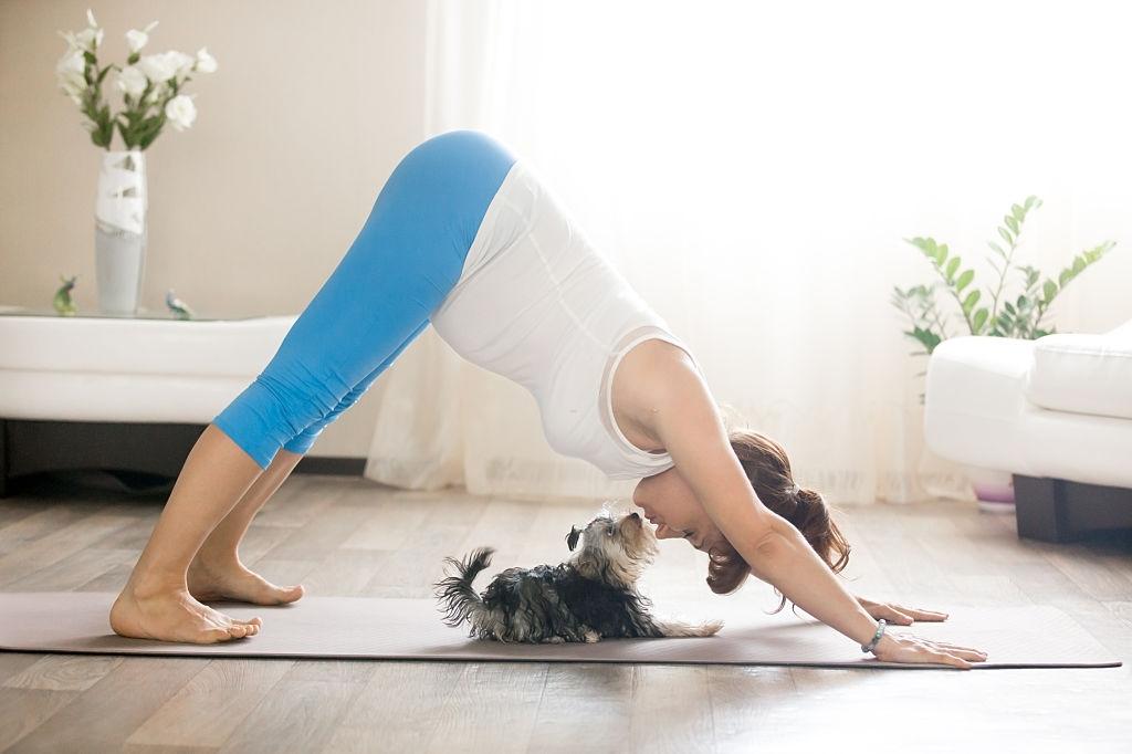 Femme enceinte fait du yoga